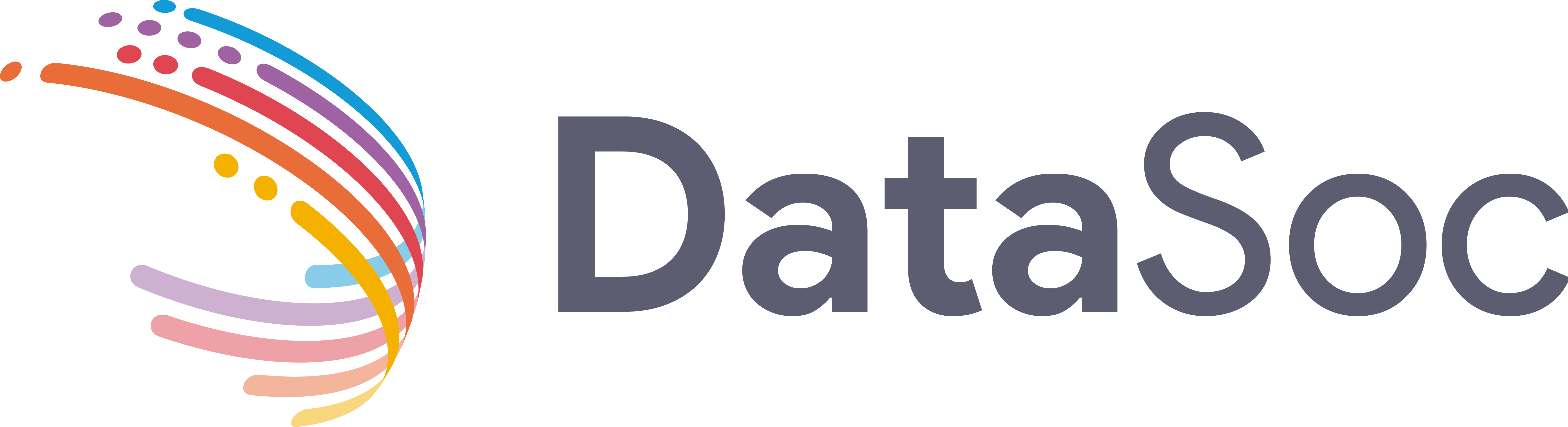 DataSoc Logo